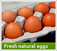 Buy fresh natural Ontario eggs